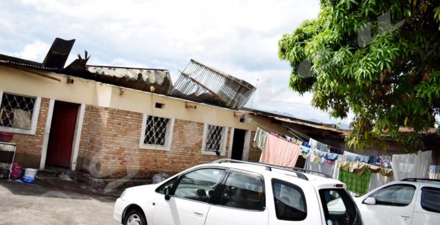 """The mango tree protected that home from being completely destroyed"", says Patrice Ndikumasabo."