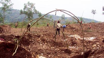 Les victimes commencent à ériger des maisons de fortune sur cette colline ©Iwacu
