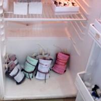 Les seules poches de sang se trouvant dans les frigos du CRTS de Gitega ©Iwacu