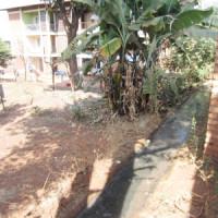 Les déchets dégoulinent à côté des maisons ©Iwacu
