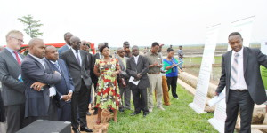 Lundi, 25 août 2014 - Après la Tanzanie, le Mozambique et le Rwanda, le Rice Yellow Mottle Virus (RYMV) a été détecté au Burundi. Selon le représentant légal de l'IRRI au Burundi, Dr. Ir. Joseph Bigirimana, des mesures pour le contrer ont été mises au point. Ici, une visite des officiels dans les champs d'expérimentation de l'IRRI à Gihanga ©Iwacu