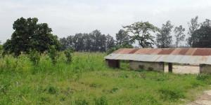 Vue partielle du terrain de Rugofarm à Rugombo ©Iwacu