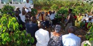 Vue partielle des caféiculteurs burundais et rwandais dans une caféière