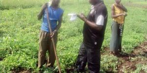 D'après les agriculteurs, la Cogerco veut cultiver le coton dans ces champs ©Iwacu