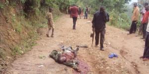 Malgré les propos du porte-parole de la Fdn, Iwacu a pris une photo d'un civil qui était sur le front avec un fusil  ©Iwacu