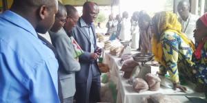 Les agriculteurs exposent les semences ©Iwacu