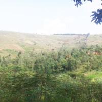 Gitega : tensions à Mubuga