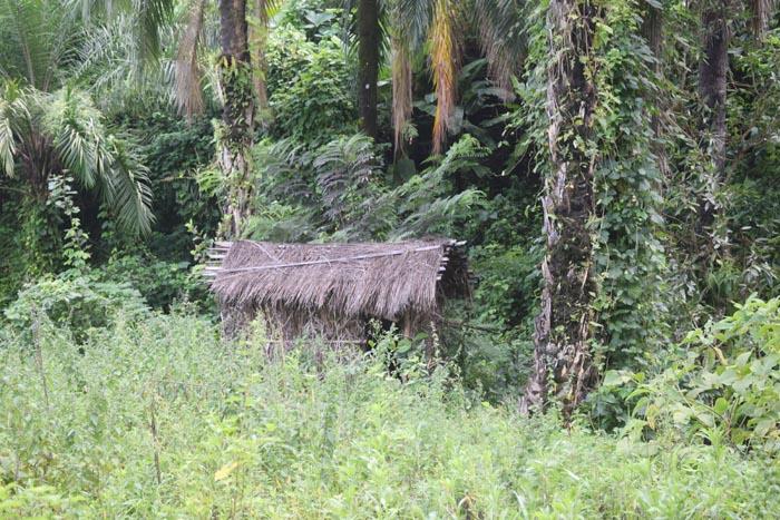 Les recrues se reposent souvent dans cette maisonnette avant de continuer vers Kuwinka ©Iwacu