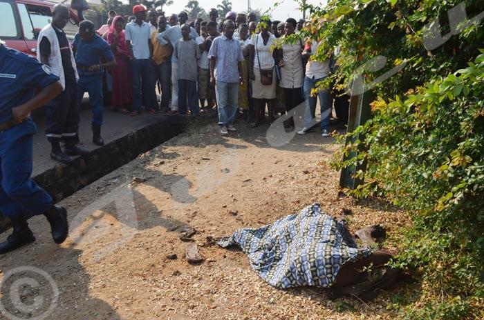 Un cadavre retrouvé sur l'Avenue de l'Imprimerie