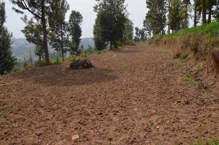 A Kayanza, les cultivateurs attendent la pluie pour semer ©Iwacu