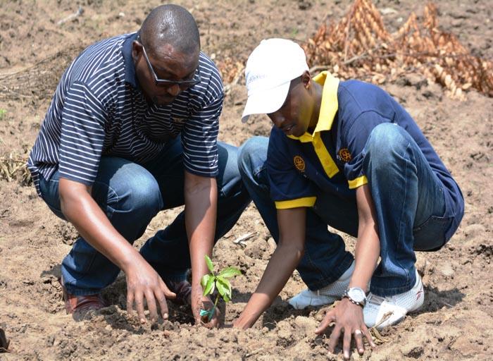 Happy Ntwari, président du Rotary Club Bujumbura-Kigobe (chapeau blanc) et Hyppolite Manirakiza, directeur du CNPK plantant un arbre
