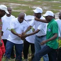 Adrien Nkunzwenimana : «Il nous faut protéger ces jeunes plants»