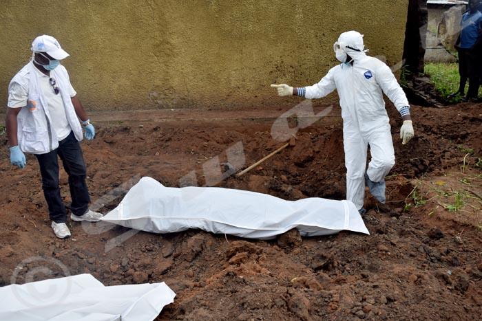 -Un seul cadavre a été découvert devant cette parcelle.
