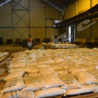 Pénurie du sucre / Des dignitaires improvisés commerçants