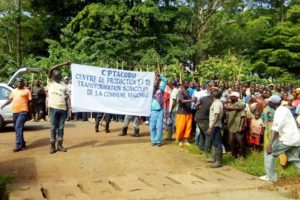 Rugofarm vs Commune Rugombo : Béatrice Kaderi outrepasse ses compétences