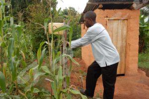 Faute de pluie, il est obligé d'arroser son champ de maïs
