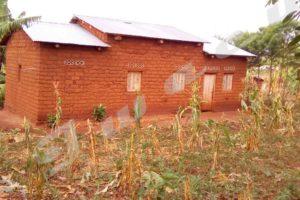 Cibitoke/Rugombo : plus de 300 ménages ont fui la sécheresse