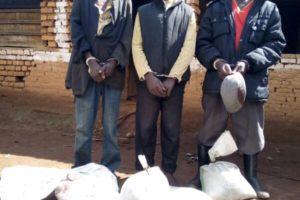 Quelques sacs de coltan saisis à Kabarore, leurs propriétaires arrêtés