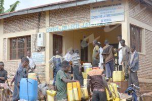 Le centre de collecte du lait de Mubuga, commune et province Ngozi