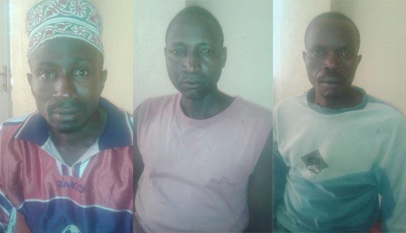 Commune Busoni : Une détention au mobile obscur