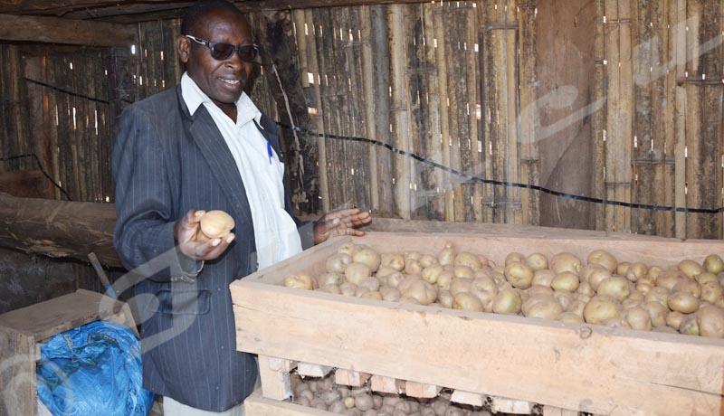 Kayanza : les producteurs des pommes de terre déchantent