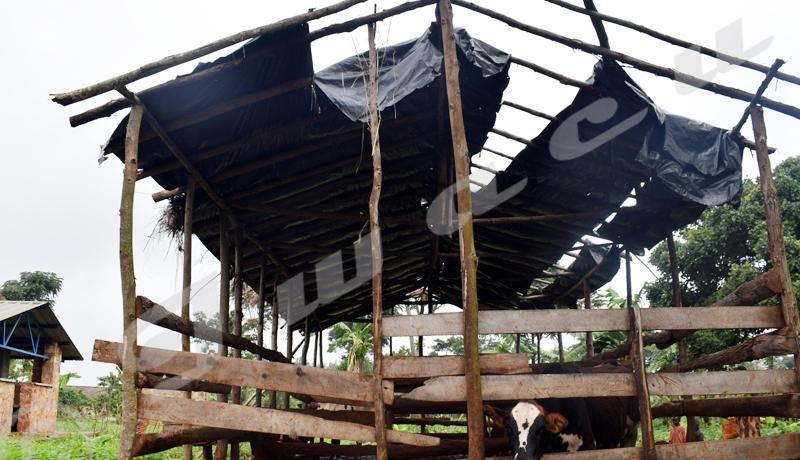 Muyinga, risque de fermeture du centre d'enseignement des métiers