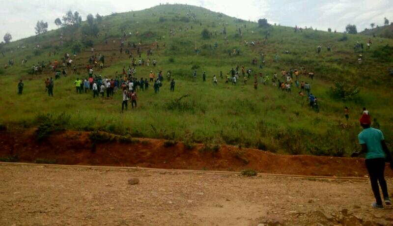 Reboiser les contreforts pour protéger Bujumbura