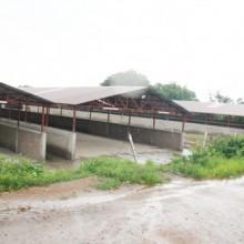 """Au marché provisoire de l'ex-terrain dit """"Cotebu"""" les travaux sont au repos dix mois après l'incendie du marché central de Bujumbura le 27 janvier 2013 ©Iwacu"""