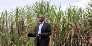 Audace Bukuru, administrateur directeur général de la Sosumo: «C'est la campagne la plus longue (202 jours) depuis le début de la production du sucre le 20 juillet 1988.» ©Iwacu