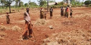 1/Certains habitants de la commune Musongati saluent le projet d'exploitation du nickel mais s'accrochent toujours à leurs parcelles.©Iwacu