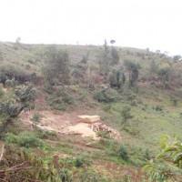 Vue partielle de la colline Kirasira ©Iwacu