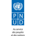 Un(e) Analyste au Programme (Paludisme, VIH et Tuberculose)