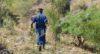 Mugina : Un policier fauche une vie pour une bière
