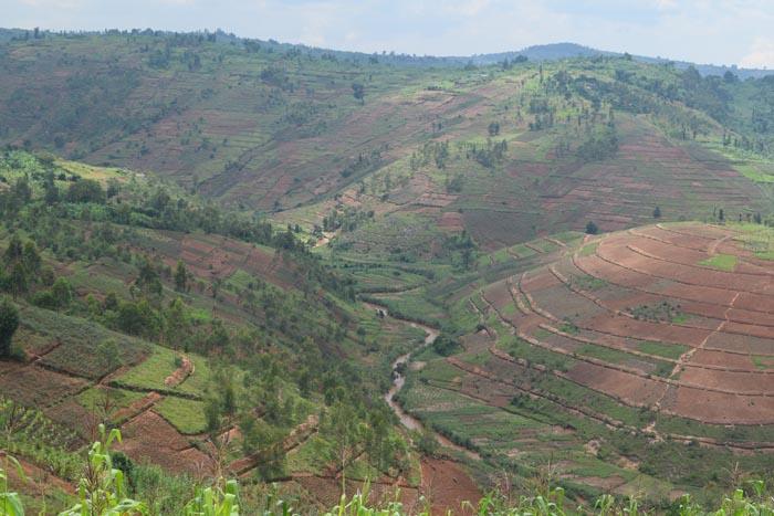 Des courbes de niveaux sur les collines de la commune Bisoro et Nyarusange surplombant  la rivière Waga ©Iwacu