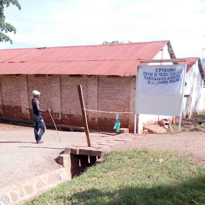 L'entrée de la société Rugofarm gardée par un imbonerakure.