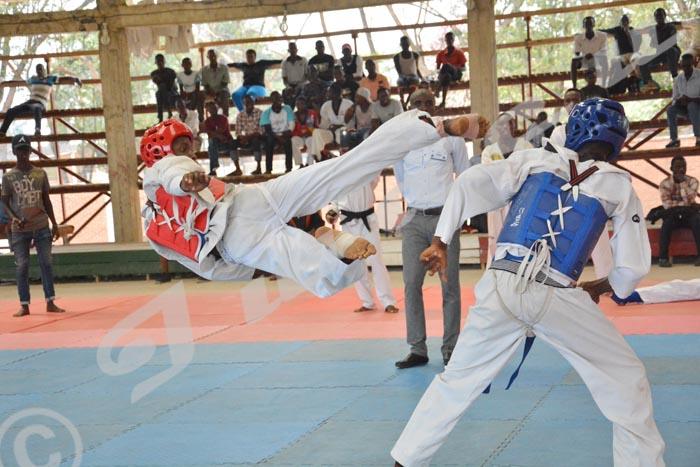 Taekwondo : le club pionnier face à mille et un défis