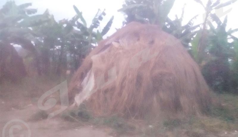 Ngozi-Ville: Des Batwa mendiants malgré l'interdiction