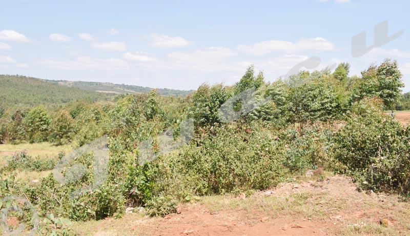 Gitega/ La population redoute l'expropriation