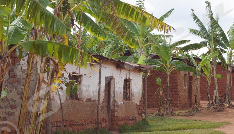 Gitega : Sites des déplacés, 25 ans après