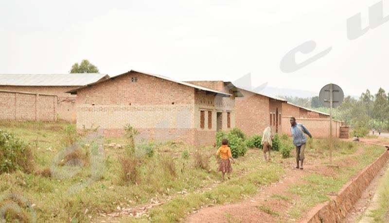 Ngozi/Mugomera : Electricité: fruit à cueillir sur un arbre de patience