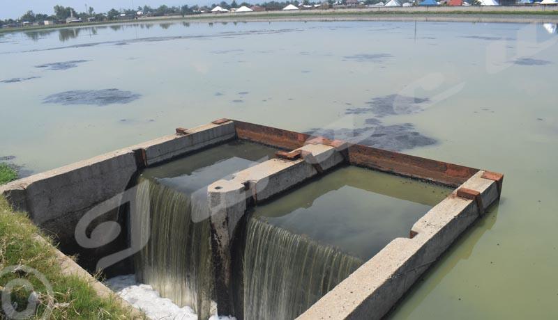 Station d'épuration des eaux usées de Buterere Les riverains dans la tourmente