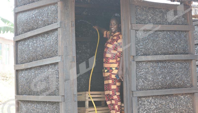 Bubanza : Du charbon pour conserver les fruits