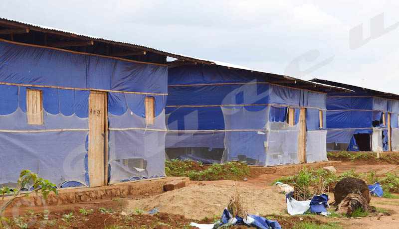 Mayengo-Cabara : les déplacés face à mille et un problèmes