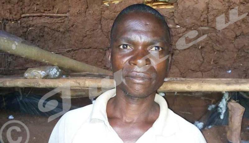Les « caisses de résilience », une solution à la famine