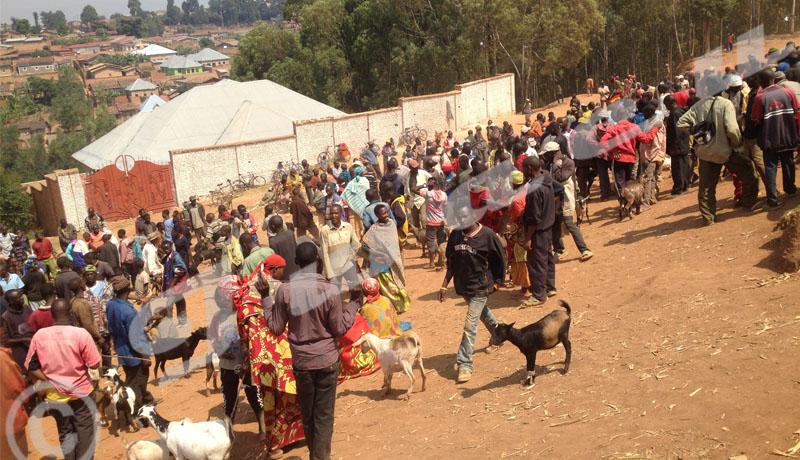 Marché de bétail de Gatwaro : fuite de taxes communales