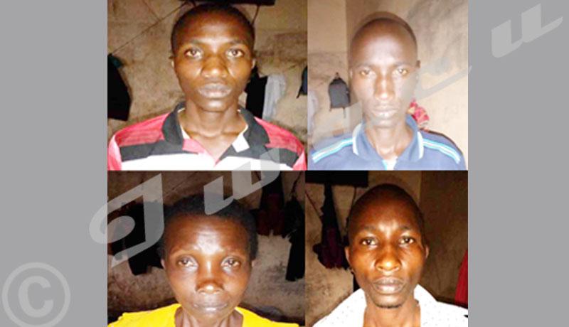 Gihogazi : Des Inyankamugayo  victimes d'une attaque sous les verrous