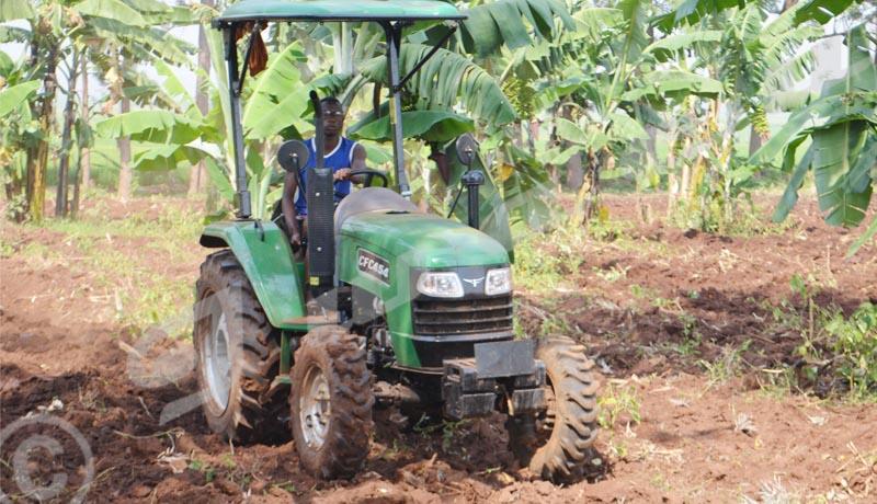Cibitoke/Rugombo: les agriculteurs protestent contre la destruction de leurs champs