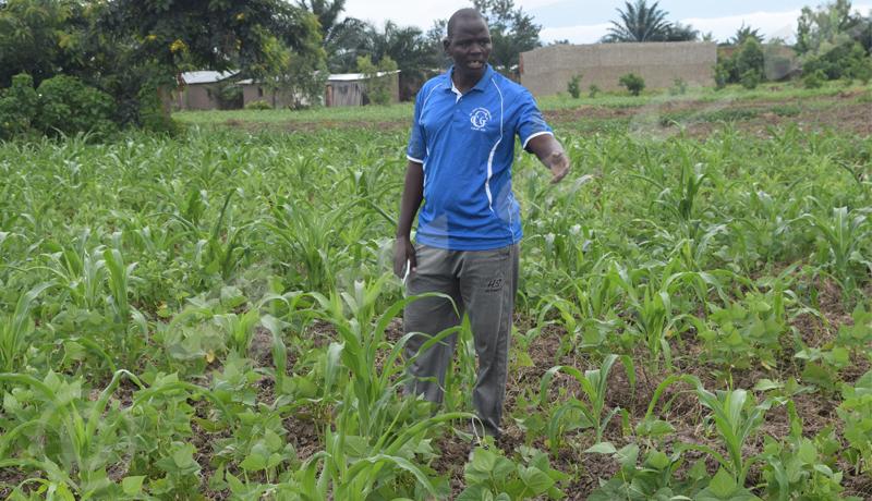 Ecofo Rukaramu, étudier et cultiver un jardin scolaire, une bonne école de la vie