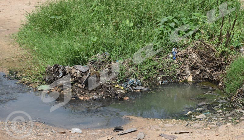 Ngagara/salubrité : Quartier IV, des eaux usées devant les ménages