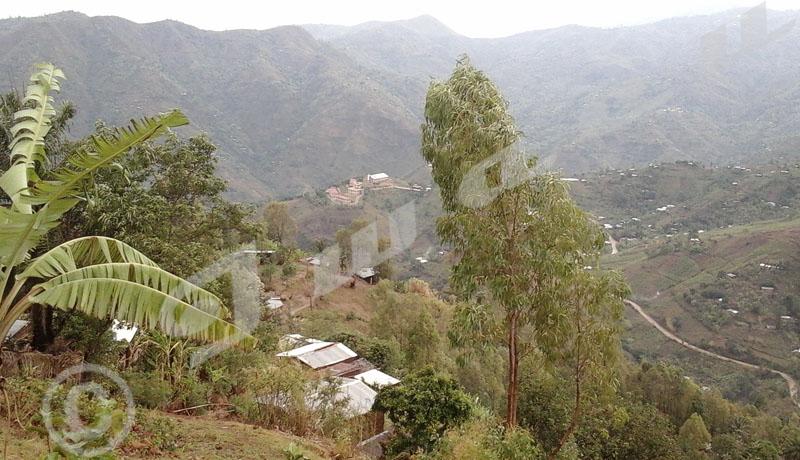 Kanyosha : «Attaque rebelle» à Muyira. Un reportage inachevé